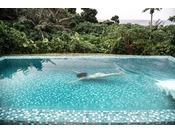 プライベートプールは7m×3.5mの広さ。豊かな自然の中で、時間を気にすることなくお過ごしいただける安らぎと癒しの楽園です。