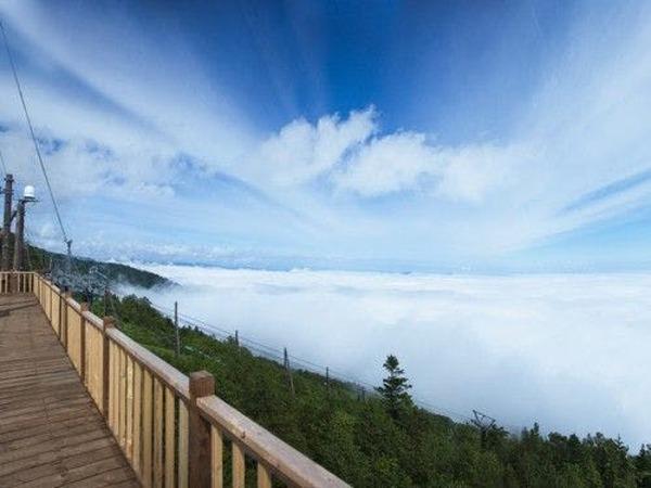 一面に広がる雲海は一見の価値あり!!