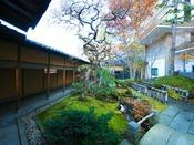 日本庭園が広がる中庭は四季を愉しめるよう設計がされた雅な造り