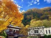 紅葉の時期になると、木々が色づき白布の秋を彩ります