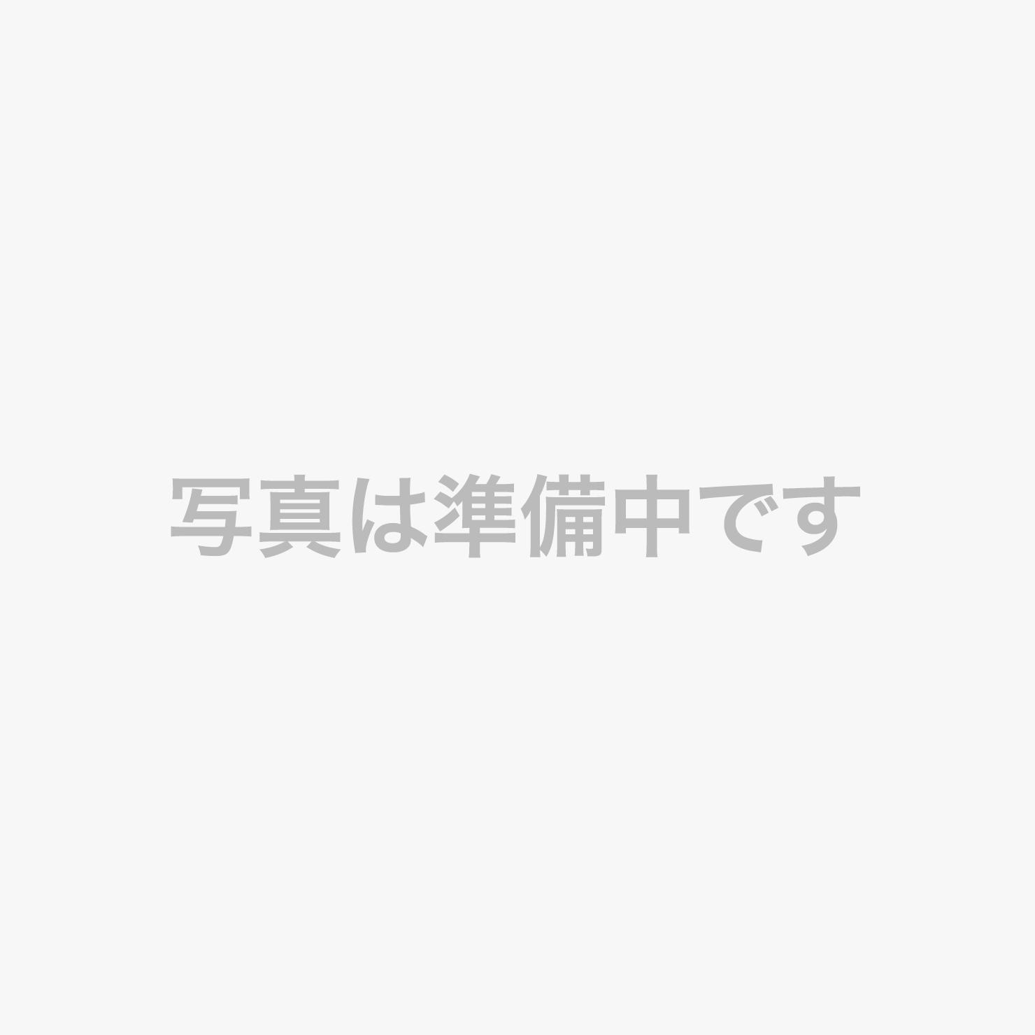 【正面玄関】眩しいばかりの新緑(深緑)が包み込む玄関(^^)※撮影6月中旬頃。