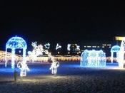 12月~2月限定白良浜イルミネーション
