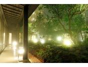 【中庭】夏霧が幻想的に包む。