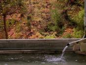 秋には露天風呂から紅葉をご覧いただけます