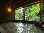 渓谷を望む最上川源流の露天風呂(女性用)