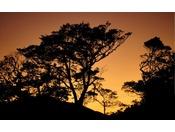 夕焼けに染まる周囲の自然