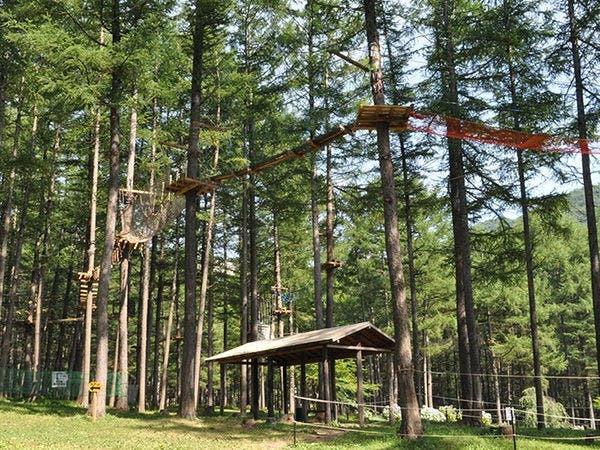木の上の大冒険「ツリーアドベンチャー」