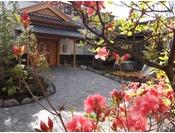 【春】季の庭玄関とツツジ。