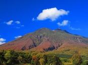 【岩木山の紅葉】季節によって様々な姿を見せる岩木山。特に紅葉は錦の絨毯を敷いたような鮮やかさを見せます。※岩木山山麓から当館まで車で約150分