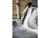 湯出口からは豊富な温泉が流れております