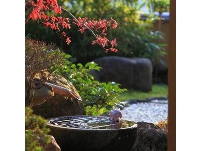 弓ヶ浜温泉 くつろぎの御宿 花さと