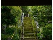 鎌倉最古のお寺 杉本寺