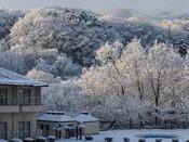 洋室からの眺望一例(冬)