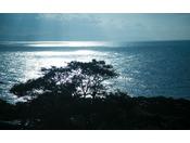 窓から見える夏の海