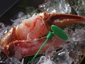 蟹身の繊細さを「絹のよう」と称される間人ガニの刺身、その繊維質に美食家に愛され続ける甘みと旨みが宿る