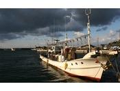 間人漁港直行で新鮮をお届けします。