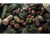 京野菜の多くがこの京丹後市で生産されている。