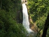 おすすめ観光スポット秋保大滝(夏)