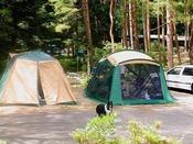 秋保森林スポーツ公園内のキャンプ場