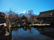 - 忍野八海 - 天然記念物である「忍野八海」は、富士山の伏流水に水源を発する湧水池です!