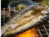 【オリーブ鮎の一夜干し】そのままでも香り高い那珂川町のオリーブ鮎を、一夜干しにすることでさらに香り高く仕上げました。