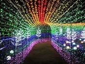 グランイルミ開催!約400万個の電球が光の世界を作り出します<当館から車約23分>