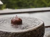 *【水盤テラス(一例)】装飾にもこだわった新人気スポットです。