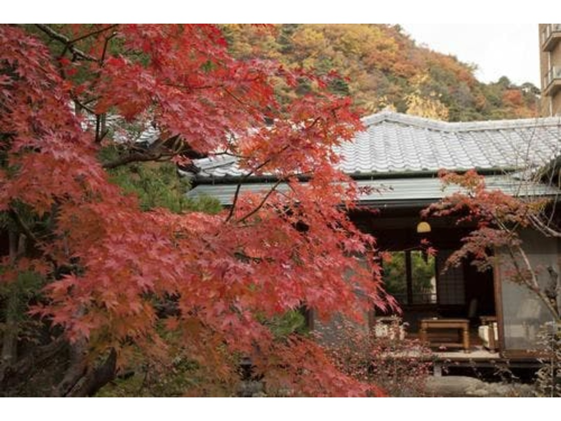 秋は庭園の紅葉に囲まれます