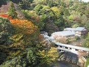 秋の游月山荘。真紅に染まる落葉山は圧巻。