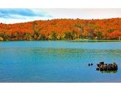 秋の潟沼と紅葉