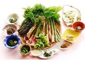 <春の山菜料理(一例)>山で採ってきた天然ものでしか味わえない甘味、風味をお楽しみください。