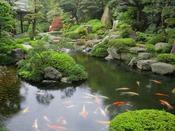佳翠苑皆美の庭園