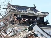【岡崎城】徳川家康が建てたことで有名な岡崎城。城内は歴史資料館となっており、岡崎城の歴史を紹介しています。5階にある展望室では、岡崎市内が一望できます。当館から車で約30分。