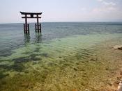 「白髭神社」湖中に浮かぶ朱塗りの大鳥居が幻想的