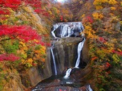 袋田の滝は茨城の誇る紅葉スポット!