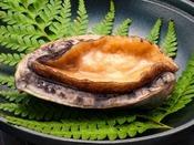 【料理】磯の香りが口いっぱいに広がります。 ふっくらで柔らかな食感の活きアワビを陶板焼きで♪