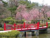 春の出逢い橋。人気の記念撮影スポットです。