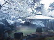 非日常を味わう雪の露天風呂