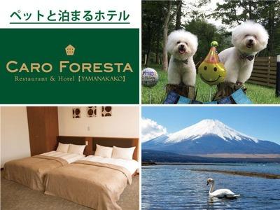 ペットと泊まる宿 CARO FORESTA