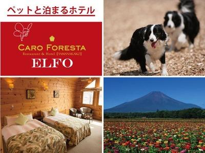 ペットと泊まる宿 CARO FORESTA ELFO