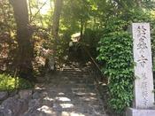 鈴虫寺・階段**まるで木のトンネルのよう