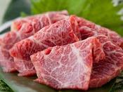 【お料理】熊本県産最高級の霜降り馬刺し