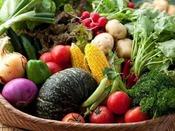 【自家農園】自家農園をはじめ、近隣直売所より仕入れる地野菜