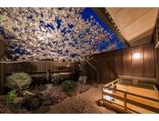 お部屋の庭にある桜で、お花見を愉しもう!