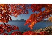 青い水面と秋の色合いで情緒あふれる風景になる田沢湖。