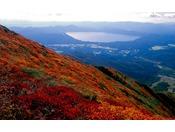 登山の途中で見えてくる田沢湖と紅葉のコントラストはおすすめスポット!