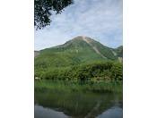 焼岳と大正池(夏)
