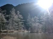 朝陽が眩しい冬の田代池周辺