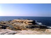 【千畳敷】当館より徒歩で約10分広い岩畳は打ち寄せる荒波により創りだされました。