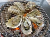 今が旬の牡蠣!